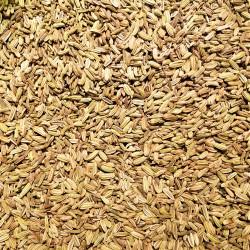 Fenouil graines 50g