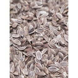 Aneth grains Nature et...