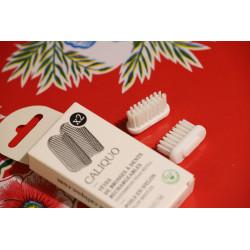 Recharge brosse à dents lot...